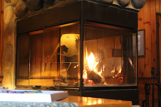 Photo: The Bear lamp shades are reflecting in the glass doors of the fireplace