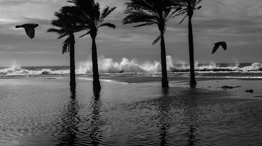 La provincia en riesgo por fuertes vientos