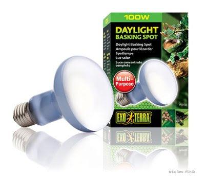 ExoTerra Daylight Basking Spot 100W R25 E27