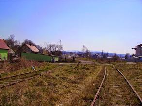 Photo: Leśna