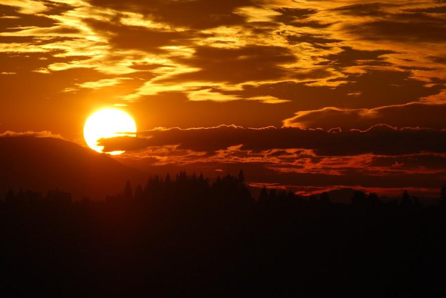 Orange Fury by Vishwastam Shukla - Landscapes Cloud Formations ( clouds, nature, sunset, peace, landscape )
