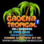 CADENA TROPICAL 101.1 icon