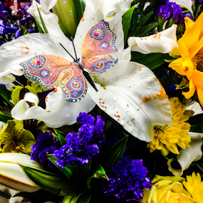 Butterfly Bouquet by Lawrence Ferreira - Flowers Flower Arangements ( butterfly, spring flowers, bouquet, floral photography, flowering, floral design, flower art, charming, colorful flowers, butterflies, flowering plants, assortment, serene, beautiful flowers, lovely, pleasant, flowers, flower close up, flower, flower photography, closeup,  )