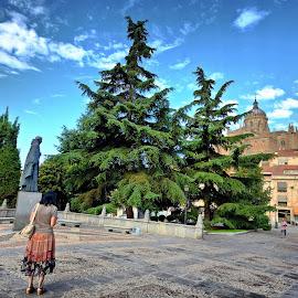 Salamanca, Spain by Francis Xavier Camilleri - City,  Street & Park  Historic Districts