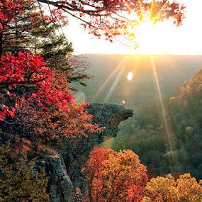 Hawksbill Crag at Sunrise by William Rainey  - Landscapes Sunsets & Sunrises ( mountains, buffalo national river, hiking, photography, arkansas, leaf, autumn, fall, leaves,  )
