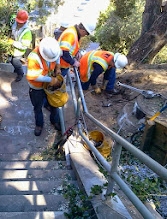 Photo: PG&E workers, responding quickly to a power outage caused by a fallen eucalyptus tree nearby, extended their repair work to the area next to the oak close to the top of the Hidden Garden Steps site (16th Avenue, between Kirkham and Lawton streets in San Francisco's Inner Sunset District) on October 4, 2013. Trimming the oak to prevent further outages was part of the work completed by mid-afternoon on this site where the 148-step ceramic-tile mosaic designed and created by artists Aileen Barr and Colette Crutcher will be installed. For more information about this volunteer-driven community-based project supported by the San Francisco Parks Alliance, the San Francisco Department of Public Works Street Parks Program, and hundreds of individual donors, please visit our website at http://hiddengardensteps.org.