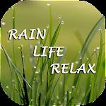 Relax Rain Life - Rain Sounds