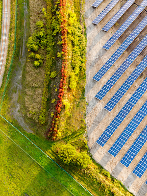 Overhead view of a field adjacent to rows of solar panels.