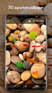 Fish On Screen 3D Wallpaper 2