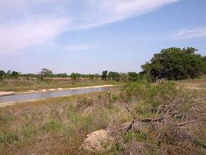 Photo: Arbitrary River Spot #1 Upstream