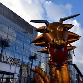 Enter the dragon by Gordon Simpson - City,  Street & Park  Street Scenes