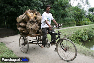 Photo: Van, a popular vehicle in the rural areas of Panchagarh