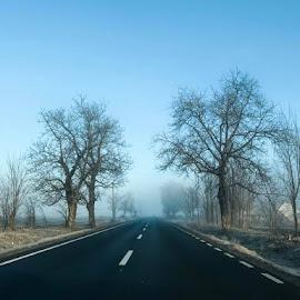 Road by Adrian Floroiu - Transportation Roads