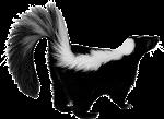 Brewpirate Skunk Scrotum