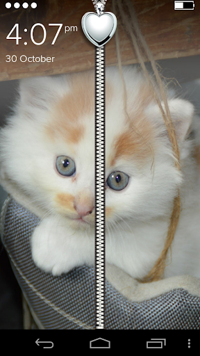 Cute White Kitty Zip Lock