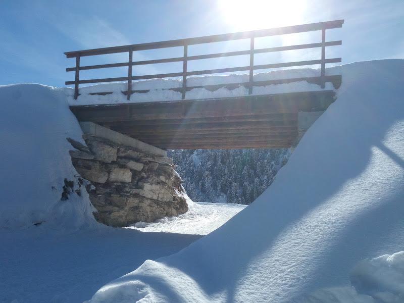 Ponticello sulla neve di Lobo77