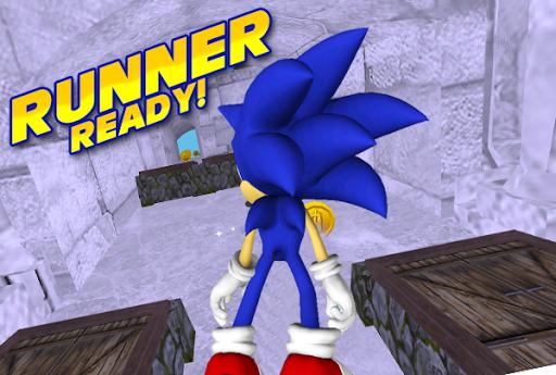 3D Super Hedgehog Run