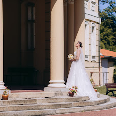 Wedding photographer Svetlana Danilchuk (Danylka). Photo of 08.07.2018