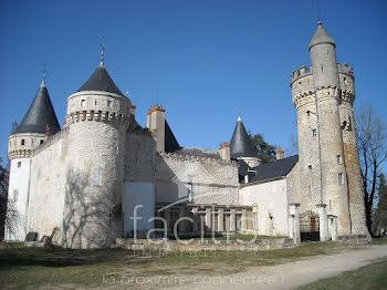 château à Neuvy-le-Barrois (18)