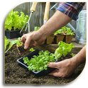 Gardening Tips (Guide) icon