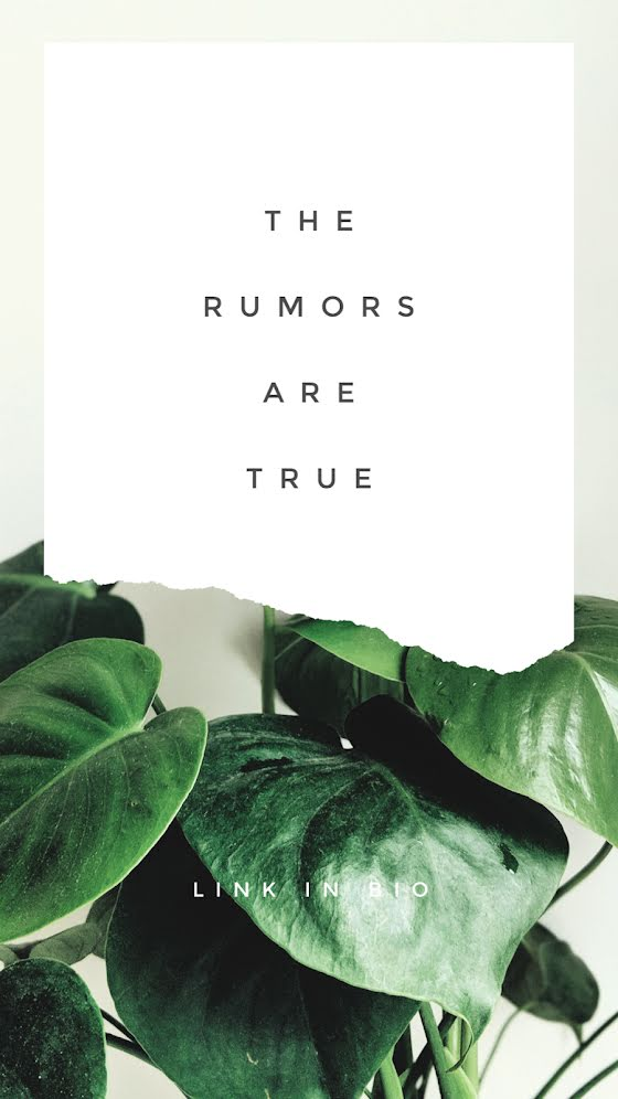 The Rumors Are True - Facebook Story Template