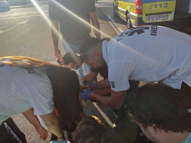 """Lamego: Cão ferido vai às urgências """"pedir ajuda"""" e é socorrido pelo INEM"""