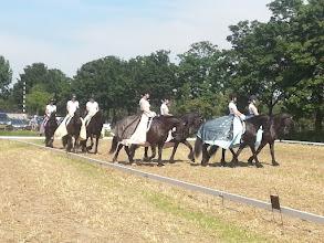 Photo: De dames van de paardencarrousel zien er heel mooi uit.
