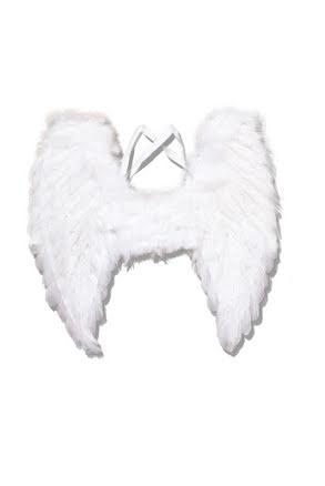 Fjädervingar, vita