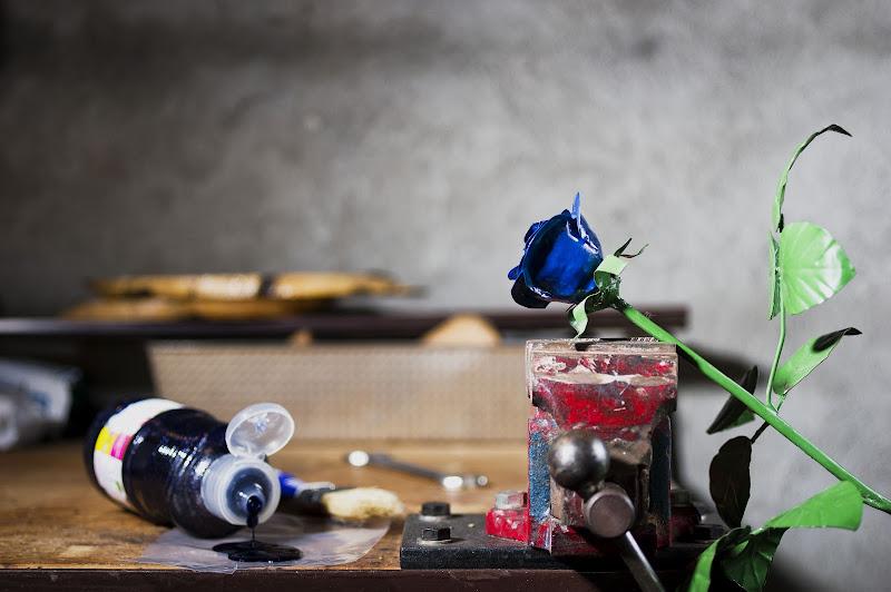 La rosa blu di Roberto Simonazzi