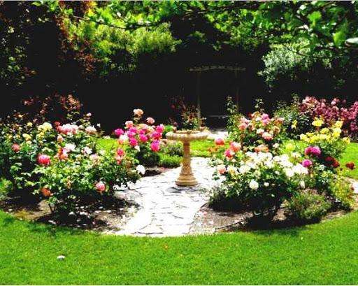 DIY家庭花園
