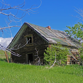 Abandoned in Pony Mt. by James Oviatt - Buildings & Architecture Decaying & Abandoned