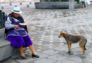 Photo: Dog hoping for scraps as vendor eats breakfast