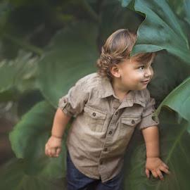 Peeking by Nemanja Stanisic - Babies & Children Toddlers ( handsome boy, big leaves, peeking, big boy, big leaf, candid, leaves, cute, cute boy, nature, little boy, peek, little man, handsome, boy )