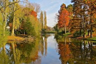 Photo: Natuur Park in de herfst. Foto: Annie Stroop