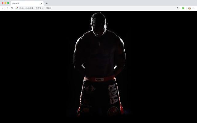 MMA HD New Tabs Popular Sports Themes