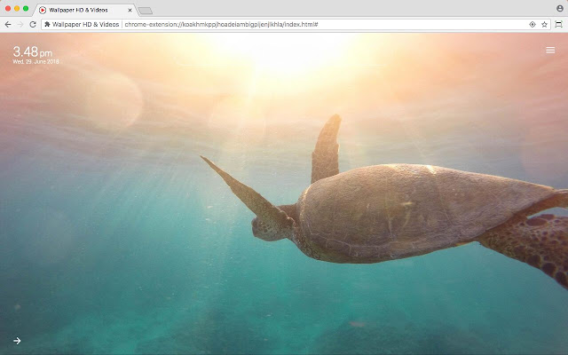 Underwater Wallpaper HD & Videos