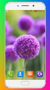 Download Purple Flower Wallpaper For PC Windows and Mac apk screenshot 10