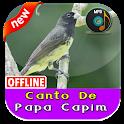 Canto De Papa Capim icon