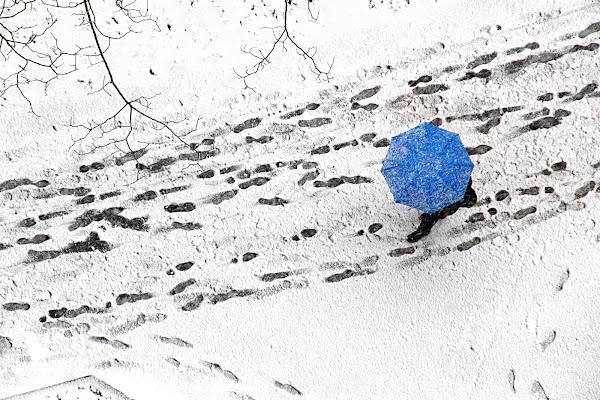 Passi nella neve di Yoyo