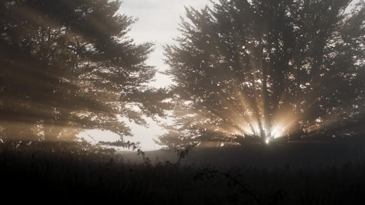 Lame di luce di roby22
