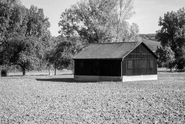 La signora e il cottage di Samuelmojo