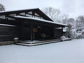 Photo: 【数寄屋造りの家】の雪景色
