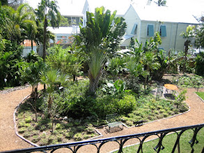 Photo: A view of the garden from the second floor veranda