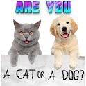 Test what cat or dog am I? Animal simulator icon