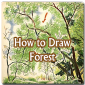How to Draw Forest and Tree