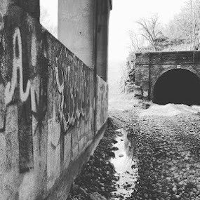 Lost by Caleb Daniel - Buildings & Architecture Decaying & Abandoned ( old, black and white, dark, train, bridge,  )