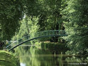 Photo: Environnement de Briare habillé de vert.