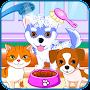 Puppy & kitty salon