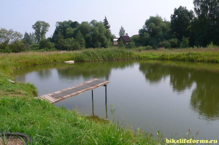 пруд в мостиком