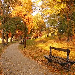 autumn 0 by Victor Pavel - City,  Street & Park  Vistas ( ... )